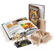 Dinosaur Book Skeleton Dig Excavation Kit