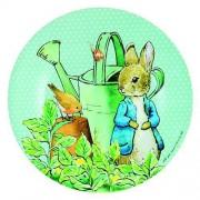 Assiette À Dessert Vert Peter Rabbit - Petit Jour