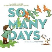 So Many Days by Alison McGhee