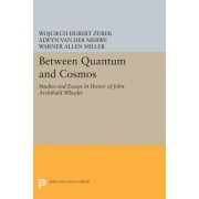 Between Quantum and Cosmos: Studies and Essays in Honor of John Archibald Wheeler
