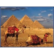 Great Pyramids of Giza Egypt Jigsaw Puzzle 500 Pcs by King of Puzzles