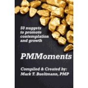 Pmmoments: 50 Nuggets of Project Management Insights to Promote Contemplation and Growth