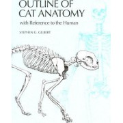 Outline of Cat Anatomy with Reference to the Human by Stephen G. Gilbert