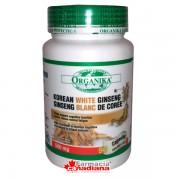 Ginseng Alb Korean 500 mg 90 capsule