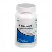L-Carnosine 500 mg 90 Cápsulas