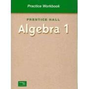 Practice Workbook: Prentice Hall Algebra 1 by Stanley A. Smith