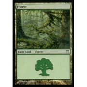 Magic the Gathering: Forest (D) - Champions of Kamigawa by Magic: the Gathering