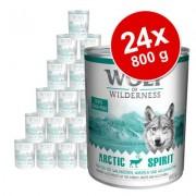 Voordeelpakket: Wolf of Wilderness 24 x 800 g - Green Fields - Lam