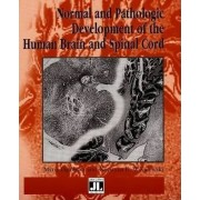 Normal and Pathologic Development of the Human Brain and Spinal Cord by Maria Dambska