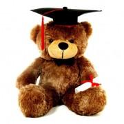 Brown 3.5 Feet Big Muffler Teddy Bear with Graduation Cap and a Scroll