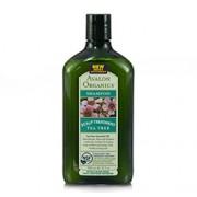 SCALP TREATMENT SHAMPOO (Organic - Tea Tree) (11oz) 325ml