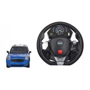 MZ 1:14 Remote Control BMW Mini Toy Car with Rechargeable Batteries, Black