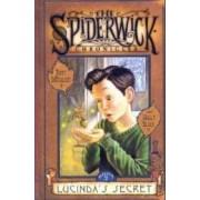 Lucinda's Secret by Holly Black
