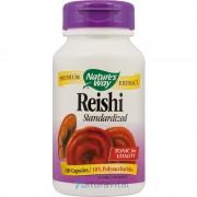 Reishi Standardizat 100 capsule