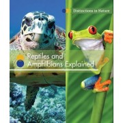 Reptiles and Amphibians Explained