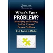 What's Your Problem? Identifying and Solving the Five Types of Process Problems by Kicab Castaneda-Mendez