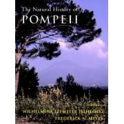 The Natural History of Pompeii by Wilhelmina Feemster Jashemski