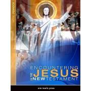 Encountering Jesus in the New Testament by Michael Pennock