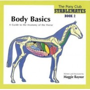 Body Basics - a Guide to the Anatomy of the Horse by Maggie Raynor