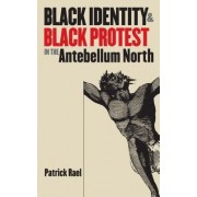 Black Identity and Black Protest in the Antebellum North by Patrick Rael