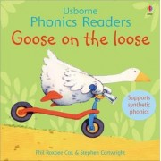 Goose On The Loose Phonics Reader by Phil Roxbee Cox