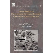 Developments in Palygorskite-Sepiolite Research by Arieh Singer