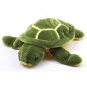 Homeshopeez Soft Cute Turtle - 22 cm(Multicolor)
