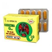 Coenzima Q10 in ulei de catina FORTE