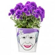 Ghiveci pentru flori, DONKEY Flower Queen Big