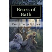 Bears of Bath by MR Paul Birkeland-Green