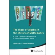 Shape of Algebra in the Mirrors of Mathematics: A Visual, Computer-Aided Exploration of Elementary Algebra and Beyond by Gabriel Katz