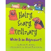Hairy, Scary, Ordinary by Brian P Cleary
