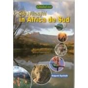 Destinatii in Africa de Sud - August Sycholt