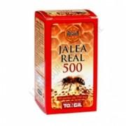 Apicol Jalea Real 500 Tongil 60 perlas