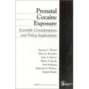 Prenatal Cocaine Exposure by Suzanne K. Wenzel