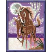 Раскрашивание по номерам «Лошадь с жеребенком»