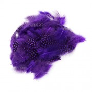 Magideal 50PCS Lots Dyeing Guinea Hen Feather Feathers 5-10cm Deep Purple