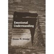 Emotional Understanding by Donna M. Orange