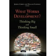 What Works in Development? by Jessica Cohen