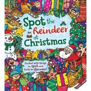 Spot the... Reindeer at Christmas by Krina Patel