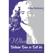 What Voltaire Tries to Tell Us by Denise Bonhomme