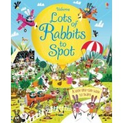 Lots of Rabbits to Spot by Louie Stowell