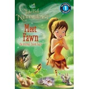 Disney Fairies: Tinker Bell and the Legend of the Neverbeast: Meet Fawn the Animal-Talent Fairy by Celeste Sisler