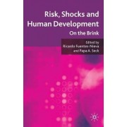 Risk, Shocks, and Human Development by Ricardo Fuentes-Nieva