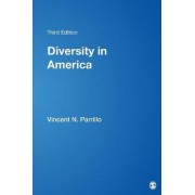Diversity in America by Vincent N. Parrillo