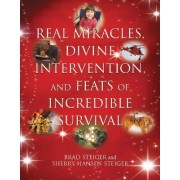 Real Miracles, Divine, Intervention And Feats Of Incredible Survival by Brad Steiger