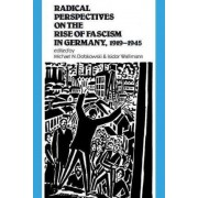 Radical Perspectives on the Rise of Fascism in Germany, 1919-1945 by Michael N. Dobkowski