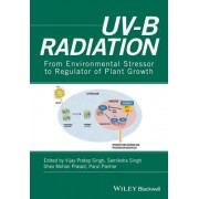 Mapping UV-B Research from Past to Recent Advancements