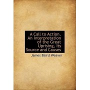 A Call to Action. an Interpretation of the Great Uprising, Its Source and Causes by James Baird Weaver