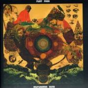 Fleet Foxes - Helplessness Blues (0602527481876) (1 CD)